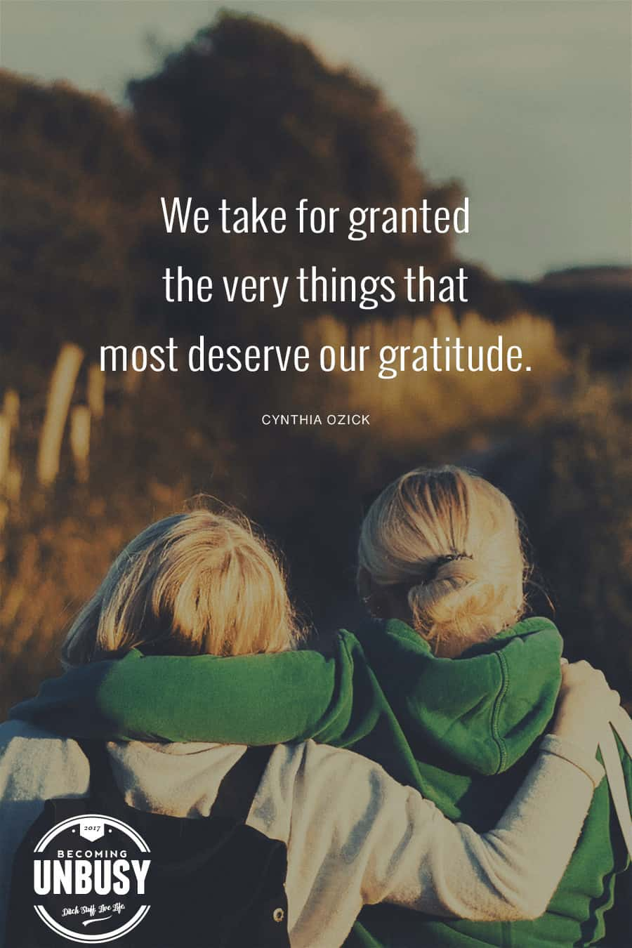 We take for granted the very things that most deserve our gratitude #quote #gratitude #BecomingUnBusy *Love this post and this site!