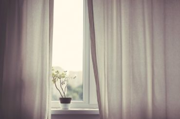 A minimalist scene of a window curtain with a simple plant peeking through.