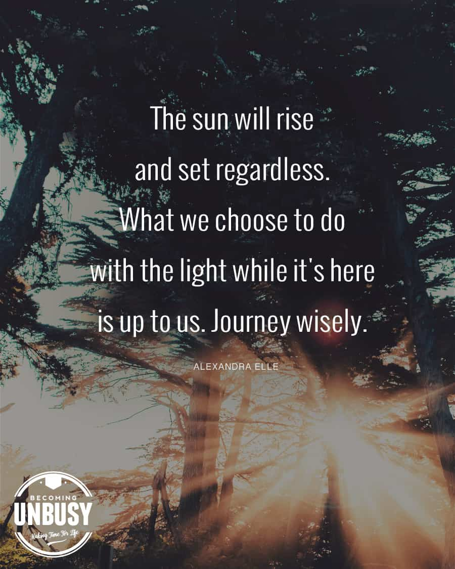 """Sun shining through tall trees with the following quote by Alexandra Elle on top, """"The sun will rise and set regardless. What we choose to do with the light while it's here is up to us. Journey wisely."""""""