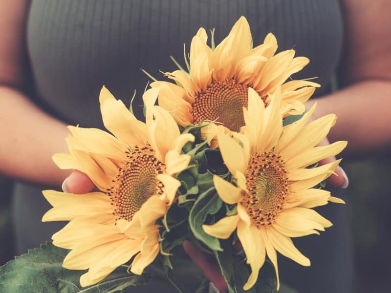 A woman holding a bouquet of sunflowers.